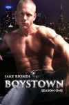The Boystown Series: Books Made-for-TV